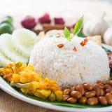 Nasi Lemak Imagem de Stock