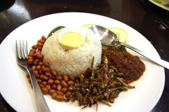 Nasi lemak Royalty Free Stock Photography