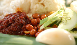 Nasi Lemak. Popular Malaysia food rice with coconut milk and groundnuts Stock Photos