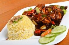 Nasi-lemak, asiatische traditionelle Reismahlzeit Lizenzfreie Stockbilder