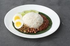 Nasi Lemak, cocina malasia imágenes de archivo libres de regalías