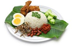 Nasi lemak, coconut milk rice, malaysian cuisine. Isolated on white background royalty free stock photography