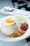 Nasi Lemak with Egg Royalty Free Stock Photos