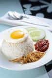 Nasi Lemak with Egg Royalty Free Stock Photos