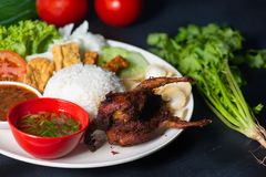 Nasi lemak kukus with quail meat top view, malaysian local food. In restaurant stock images