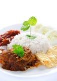 Nasi lemak malay dish. Nasi lemak kukus traditional malaysian spicy rice dish. Served with belacan, ikan bilis, acar, peanuts and cucumber. White background stock photo