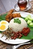 Nasi lemak, malaysian coconut rice royalty free stock photos