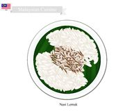 Nasi Lemak or Malaysian Streamed Rice in Coconut Milk Royalty Free Stock Photography