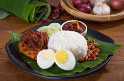 Nasi lemak, a traditional malay curry paste rice Royalty Free Stock Images