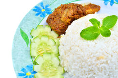 Nasi lemak traditional malaysian spicy rice dish Royalty Free Stock Photo