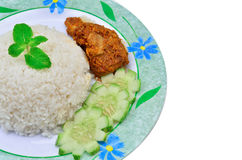 Nasi lemak traditional malaysian spicy rice dish Royalty Free Stock Image