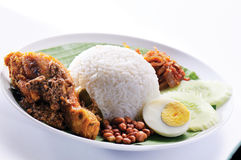 Nasi lemak traditionell Stockbilder
