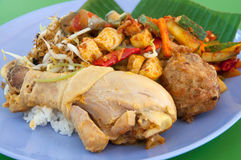 Nasi Padang Royalty Free Stock Photography