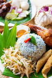 Nasi ulam Royalty Free Stock Photo