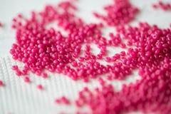 Nasieniodajni koraliki karmazyny barwią na tekstylnym tle zdjęcie royalty free