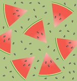 nasiona arbuza ilustracji