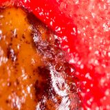 nasiona arbuza 2009 kwiatów makro- lato super Zdjęcia Royalty Free