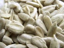 nasiona słonecznika fotografia stock
