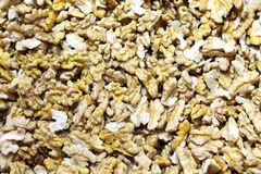nasiona wiele orzech włoski zdjęcie royalty free