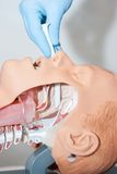 Naso-pharyngeal tube used to open the airway used to open the airway Stock Images