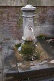 Nasone typisk springbrunn i Rome, Italien royaltyfria bilder