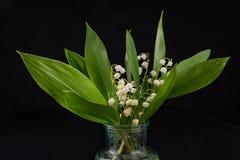 Nass Lilien gebrochen vom Garten Sch?ne Blumen in einem Glasvase stockfotos