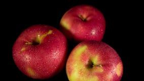 Nass rote Äpfel schalten einen schwarzen Hintergrund ein stock footage