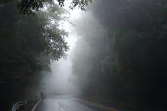 Nass Straße und nebelig lizenzfreie stockfotos