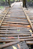 Nasse Bambusbrücke Stockfotografie