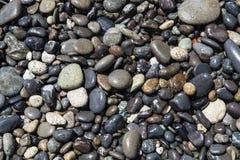 Nasse Felsen Stockbilder