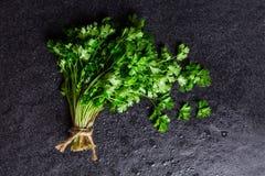 Nasse frische grüne Petersilie auf dunklem Steinhintergrund Lizenzfreies Stockfoto