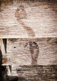 Nasse Fuß-Drucke Stockfotos