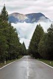 Nasse glänzende Straße, niedrige Kumuluswolken Lizenzfreie Stockfotos