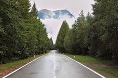 Nasse glänzende Straße auf den Schweizer Lizenzfreie Stockbilder