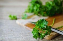 Nasse grüne Petersilie Stockfoto