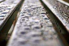 Nasse hölzerne Bank der Nahaufnahme nach Regen stockfoto