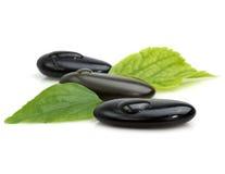 Nasse Kieselsteine mit grünen Blättern Stockfotografie