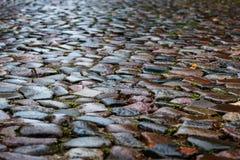 Nasse Kopfsteine in einer mittelalterlichen Straße, Hintergrundbeschaffenheit Stockfotografie