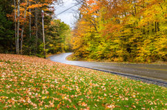 Nasse kurvenreiche Straße durch einen bunten Wald Stockbilder