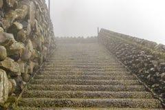 Nasse Leiter im Nebel auf der Insel von Madeira Lizenzfreies Stockfoto