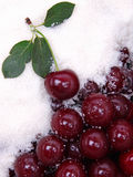 Nasse reife rote Kirschen als Hintergrund Stockfotografie