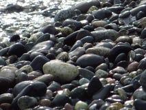 Nasse Steine Stockbild