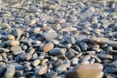 Nasse Steine auf dem Seeufer Stockfotografie