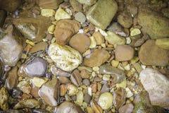 Nasse Steine im Flussufer Lizenzfreies Stockfoto