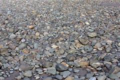 Nasse Steine und Felsen auf einem Hintergrund des sandigen Strandes Stockbild