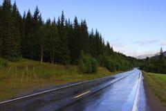 Nasse Straße Stockfoto