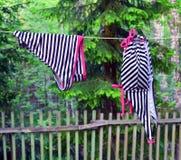 Nasser Badeanzug auf einem Seil Stockfoto