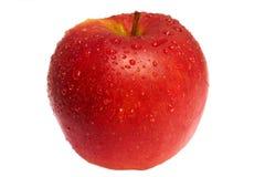 Nasser roter Apfel Stockfotografie