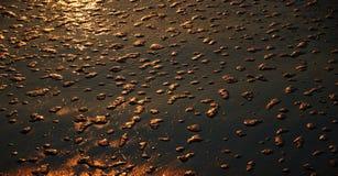 Nasser Sand mit Flocken des Schaums Stockfotografie