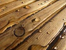 Nasses Holz stockfotografie